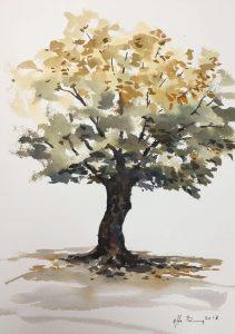 Mal et træ med akvarel