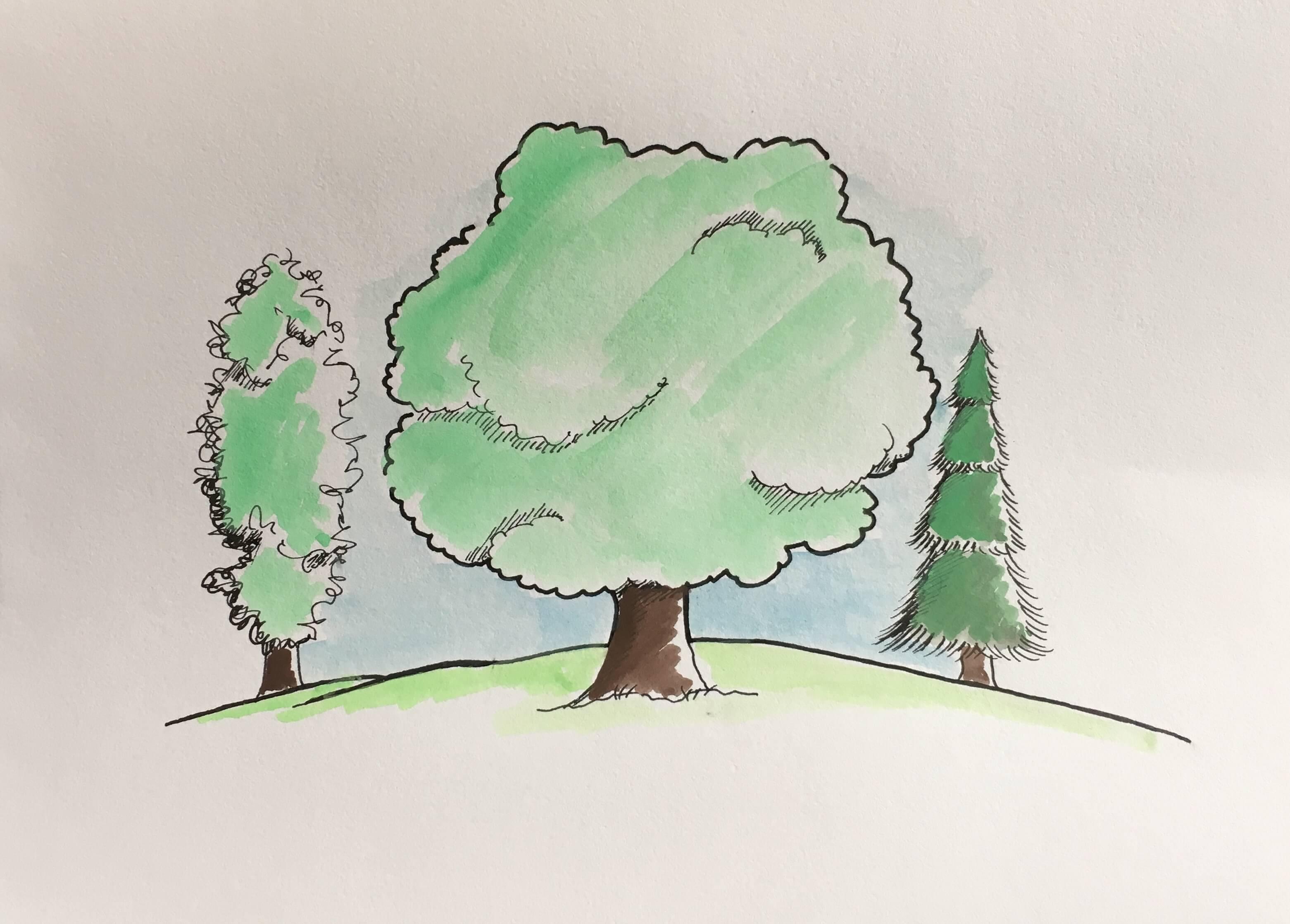 Lær at tegne træer